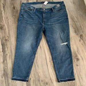 J. Crew ankle jeans. NWT. Plus size 37 (24)